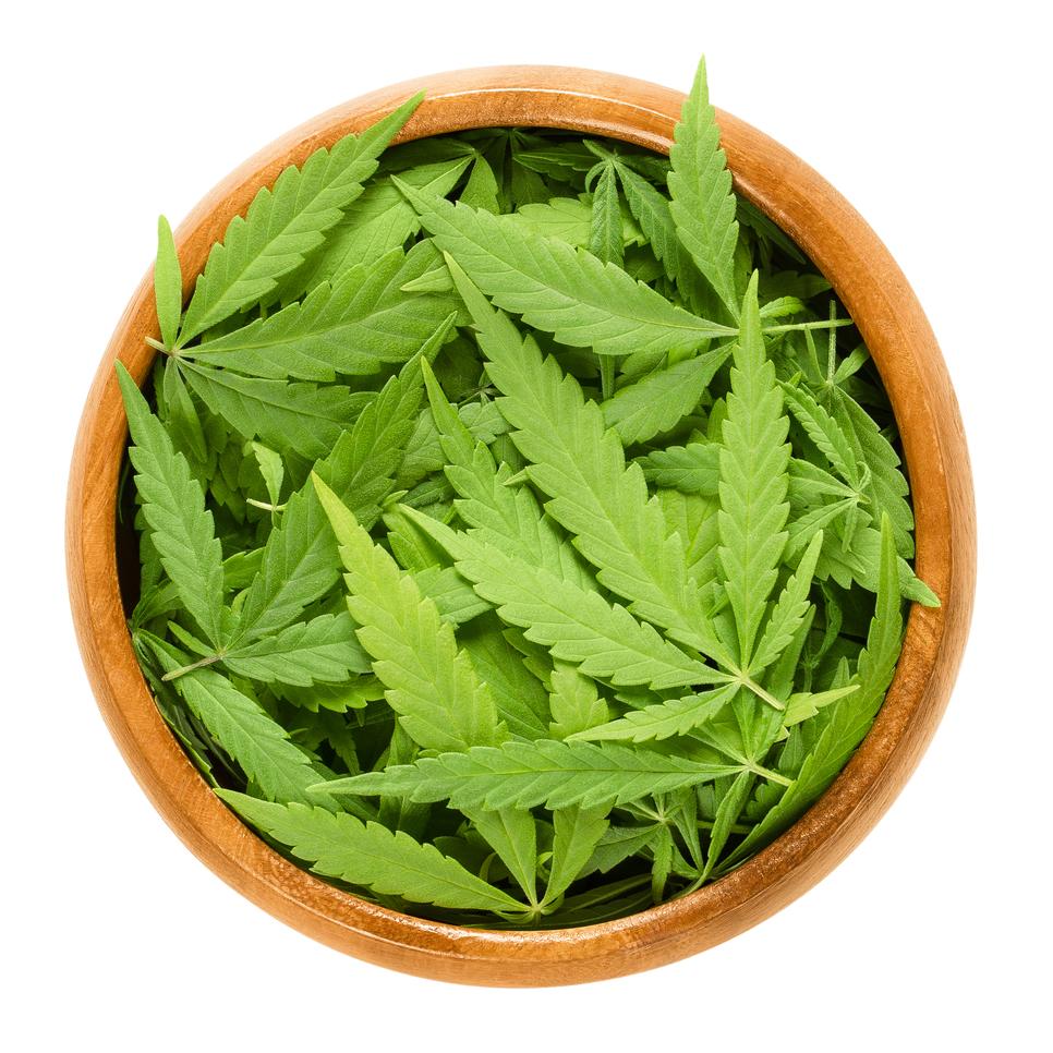 Cannabis fan leaves in wooden bowl